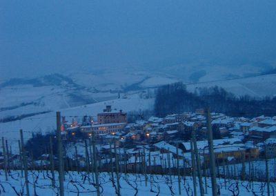 Vigneto Canonica - inverno